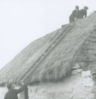 Photograph of 2 men kneeling on the top of a thatched cottage.