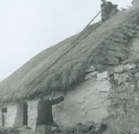 Photograph of 2 men securing the thatch on the roof of a cottage.