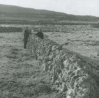 Photograph of 2 men building a dry stone wall, Inishmore.