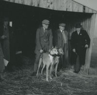 Photograph of 5 people in front of a shed at a coursing meeting.