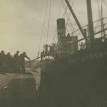 Photograph of a pig being loaded onto the Dun Aengus steamer by crane, Aran Islands