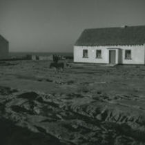 Photograph of a man and his dog walking towards his cottage, Aran Islands.