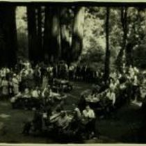 Photograph of picnic in the San Mateo County Recreation Park